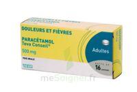 PARACETAMOL TEVA CONSEIL 500 mg, comprimé à PARIS